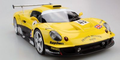 TOPMARQUES 1/18scale Lotus Elise GT1 Frank Muller (Yellow / Green) No.49 1997 Le Mans  [No.TOP055C]